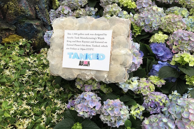 "A sign for the aquarium constructed by the team at ""Tanked"" is shown on the opening night of the Bellagio Conservatory's ""Under the Sea"" summer display on Friday, May 20, 2016. (Caitlin Lilly/Las  ..."