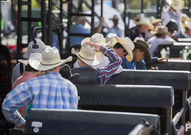 Cowboys gather near the chutes during the bull riding event at Las Vegas Helldorado Days within the Las Vegas Village on Friday, May, 13, 2016. (Jeff Scheid/Las Vegas Review-Journal) Follow @jlscheid