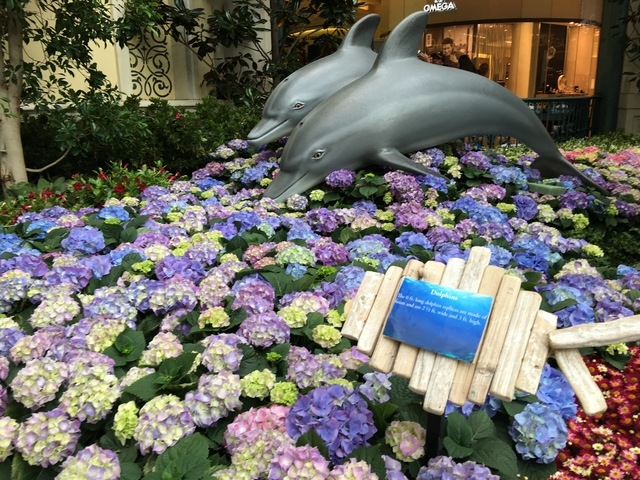 "Two 6 ft. long dolphins made of foam add to the impress ""Under the Sea"" display the Bellagio Conservatory on Friday, May 20, 16. (Caitlin Lilly/Las Vegas Review-Journal)"