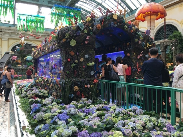 "Guests line up to stroll through the Bellagio Conservatory's two 20-ft. aquariums built by the team on Animal Planet's ""Tanked"" on Friday, May 20, 2016. (Caitlin Lilly/Las Vegas Review-Journal)"