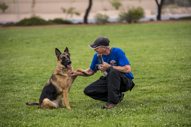 Jeff Wagner works with his dog Koda during a Las Vegas Valley Schutzhund Club training session at Patriot Park in Las Vegas May 7, 2016. Joshua Dahl/View