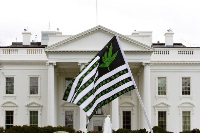 A demonstrator waves a flag with marijuana leaves on it during a protest calling for the legalization of marijuana, outside of the White House in Washington. (Jose Luis Magana/AP)