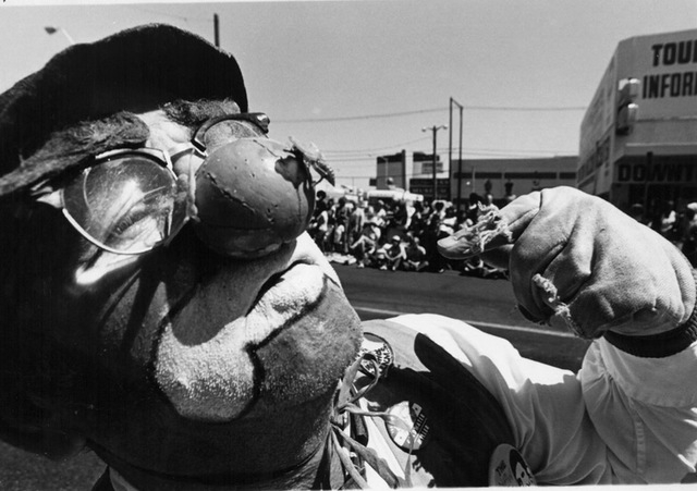 A clown shows off a bee that landed on his nose at Helldorado Days in Las Vegas in 1975. (Review-Journal file)