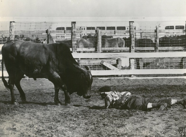 A clown tempts a bull in Helldorado Days in downtown Las Vegas in 1963. (Review-Journal file)