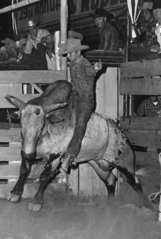 A bull rider is seen at Helldorado Days in Las Vegas in 1963. (Terry Todd/Las Vegas Review-Journal)