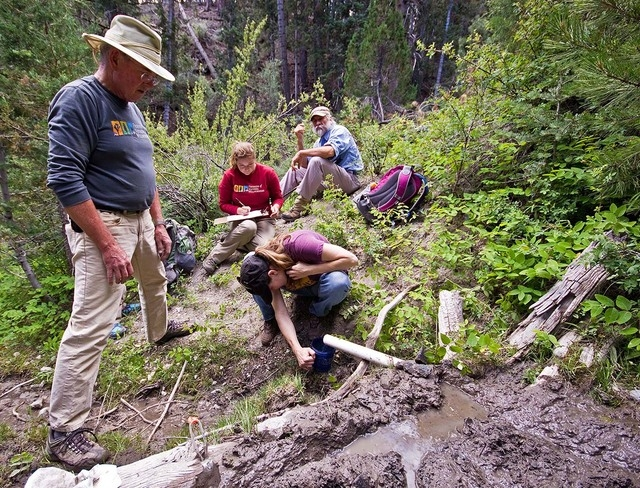 Volunteers in the Spring Mountains learning to measure flow rate as part of the Spring Monitoring Program. Minas Mkhitarian/Special to View