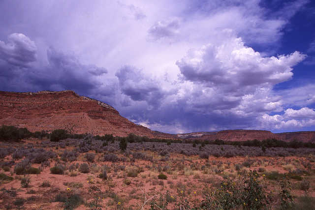 A summer thunderstorm forming over Vermilion Cliffs anear Kanab, Utah (Thinkstock)