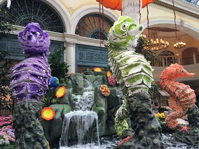 The trio of colorful seahorses is shown at the Bellagio Conservatory on Friday, May 20, 2016. (Caitlin Lilly/Las Vegas Review-Journal)