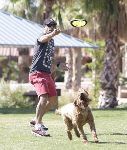 Mario Garrido throws a Flexi-Frisbee to his dog Maya as they play at Lorenzi Park Thursday, May 13, 2016. Bizuayehu Tesfaye/Las Vegas Review-Journal Follow @bizutesfaye
