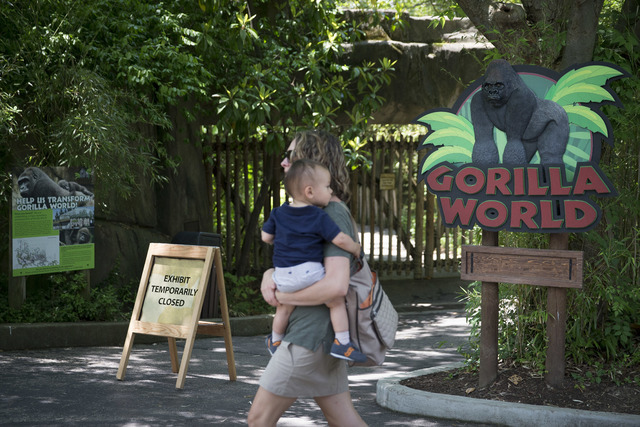 A visitor with a small child passes outside the shuttered Gorilla World exhibit at the Cincinnati Zoo & Botanical Garden, Sunday, May 29, 2016, in Cincinnati. (John Minchillo/The Associated Press)