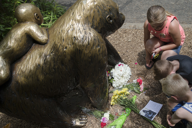 Children pause at the feet of a gorilla statue where flowers and a sympathy card have been placed, outside the Gorilla World exhibit at the Cincinnati Zoo & Botanical Garden, Sunday, May 29, 2 ...