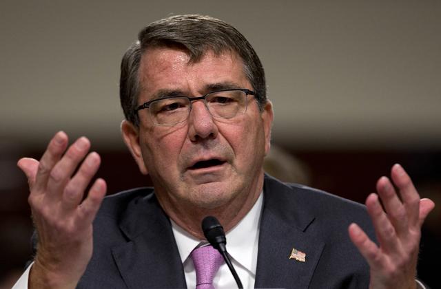 Defense Secretary Ash Carter testifies on Capitol Hill in Washington, July 7, 2015. (Carolyn Kaster/AP)
