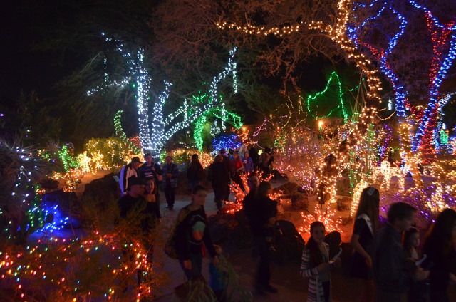 Visitors line the walkways after the annual lightening ceremony at Ethel M Chocolates Botanical Cactus Garden Nov. 13. The attraction is slated to remain aglow through Jan. 1. (Ginger Meurer/View)