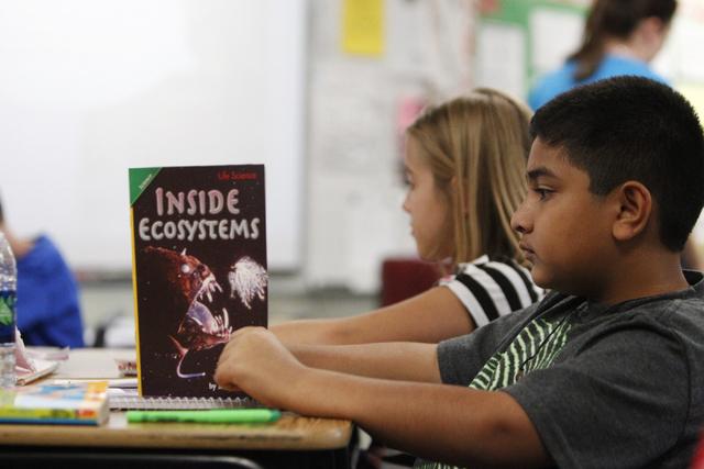 Fifth grader Keyaan Qureshi, 10, reads a books inside his classroom at Wright Elementary School in Las Vegas Friday, Sept. 19, 2014.  (Erik Verduzco/Las Vegas Review-Journal)