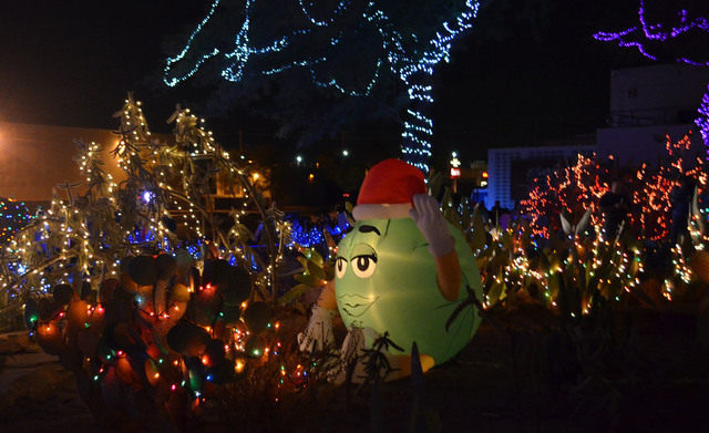 An M&M character is among the stars at the 2014 Ethel M holiday cactus garden. (Ginger Meurer/View)