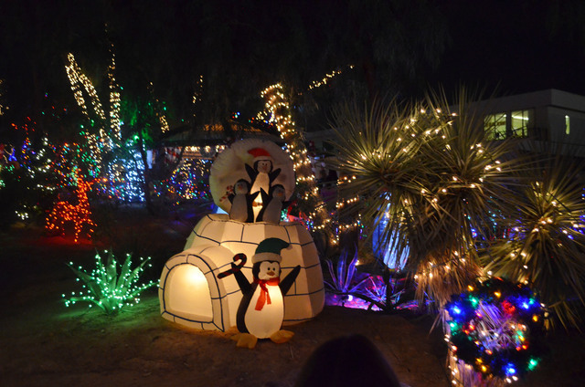 Penguins are among the stars of Ethel M holiday cactus garden, photographed Nov. 13, 2014. (Ginger Meurer/View)