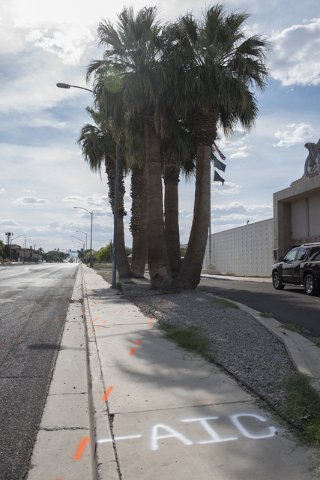 Police markings are seen on the ground leading to the palm tree where a corvette was involved in a fatal crash just west of the intersection of East Washington Avenue and North Bruce Street in Las ...