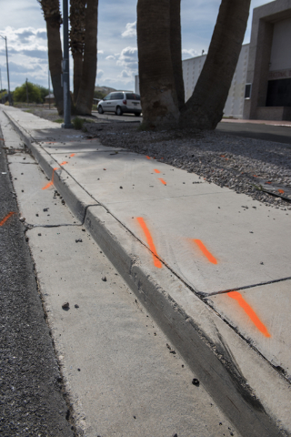 Police markings and skid marks are seen on the ground leading to the palm tree where a corvette was involved in a fatal crash just west of the intersection of East Washington Avenue and North Bruc ...