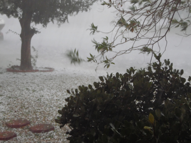 Hail piles up in a yard on Brockton Way in Henderson Thursday, June 30, 2015. Natalie Burt/Special to the Las Vegas Review-Journal