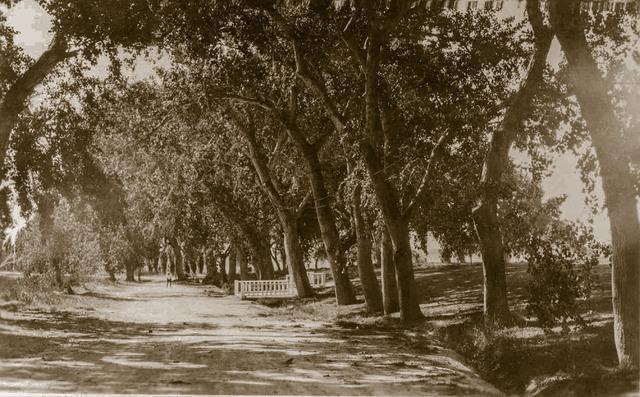 Kiel Ranch driveway (UNLV Library Special Collections)