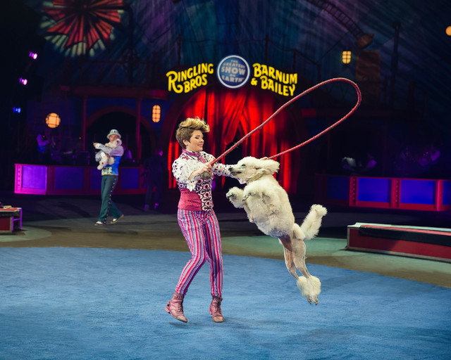 "Irina and one of her canine companions combine comedy and circus skills in Ringling Bros. and Barnum & Bailey Circus' ""Circus Xtreme."" (Feld Entertainment)"