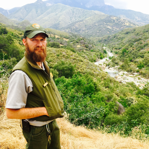 Park Wildlife Biologist Danny Gammons stands along the popular General's Highway in Sequoia national Park, home to several hundred black bears. (John M. Glionna/Special to the Las Vegas Review-Jou ...