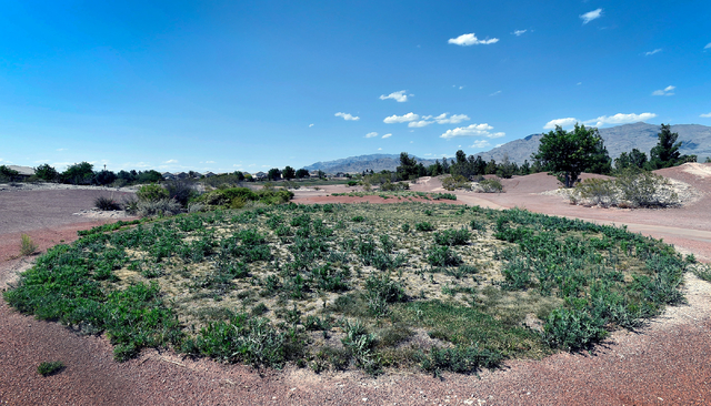 Weeds are seen growing over one of the tee boxes at the now closed Silverstone Golf Club Monday, May 23, 2016, in Las Vegas. (David Becker/Las Vegas Review-Journal) Follow @davidjaybecker