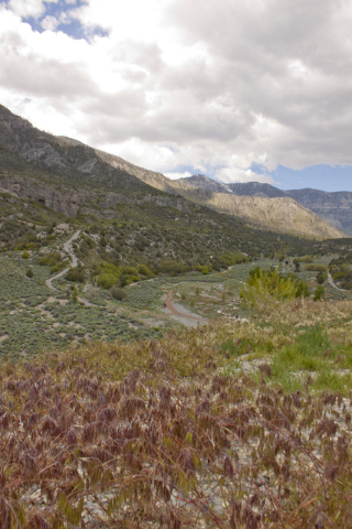 The view from the Spring Mountains Visitor Gateway shows multiple ranges. Special to View
