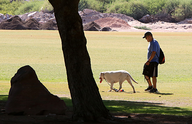 A man walks his dog at Sunset Park during a hot morning on Wednesday, June 1, 2016. Wednesday's triple-digit high is expected to top out at 101 degrees. (Bizuayehu Tesfaye/Las Vegas Review-Journal ...
