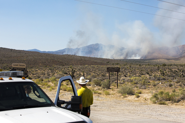 Ray Johnson, a fire prevention officer with the U.S. Forest Service, waits for a VLAT aircraft to drop retardant on a wildfire near state Route 160 and Lovell Canyon Road on Sunday, June 26, 2016  ...