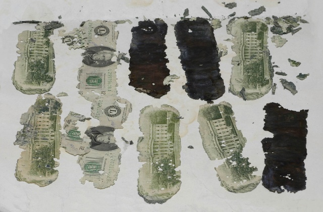 Some of the stolen $20 bills taken by a hijacker calling himself D.B Cooper and found in Oregon by a young boy in 1980 are displayed in an undated FBI picture.    FBI/Handout via Reuters