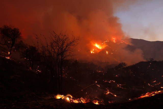 Fire burns brush on a hillside during the so-called Sand Fire in the Angeles National Forest near Los Angeles, California, U.S. July 24, 2016. REUTERS/Jonathan Alcorn