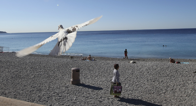 A white pigeon fliers over the beach near the scene of a truck attack in Nice, southern France, Saturday, July 16, 2016. (Luca Bruno/The Associated Press)
