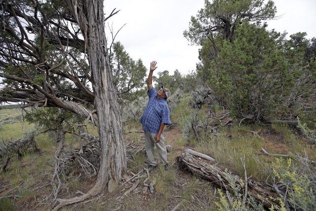 Jonah Yellowman, a Navajo spiritual adviser, points skyward in Kane Gulch, near Blanding, Utah, on June 22. (Rick Bowmer/The Associated Press)