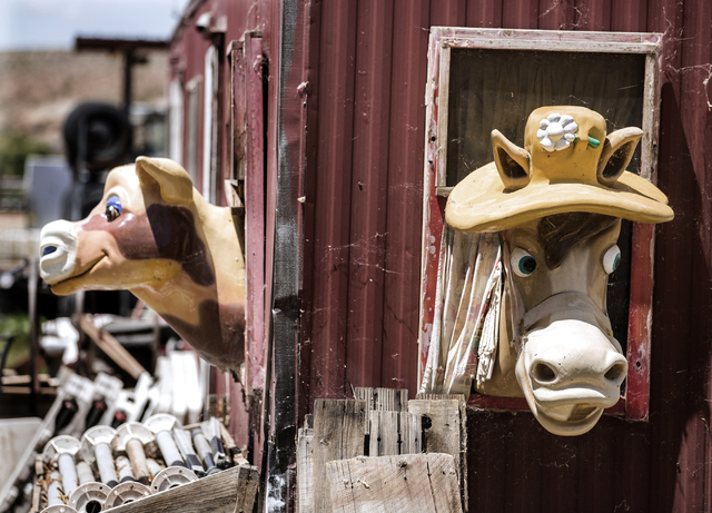 Colorful animal characters peer through windows of a tack room at the Bundy Ranch in Bunkerville, Nev., on Thursday, May 19, 2016. Jeff Scheid/Las Vegas Review-Journal Follow @jlscheid