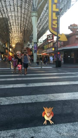 A Spearow is seen at the Fremont Street Experience on the screen of a Pokemon Go user in downtown Las Vegas, on Wednesday, July 13, 2016. (Ashley Casper/Las Vegas Review-Journal)