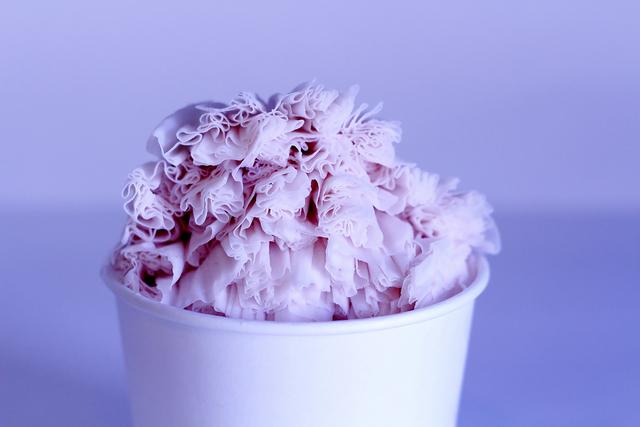 Snowflake Shavery (Courtesy)