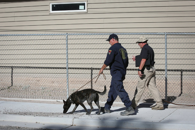Police use a K-9 to search the campus of Panaca Elementary school the day after a bombing that killed one person in Panaca, Nev., on Thursday, July 14, 2016. Brett Le Blanc/Las Vegas Review-Journa ...