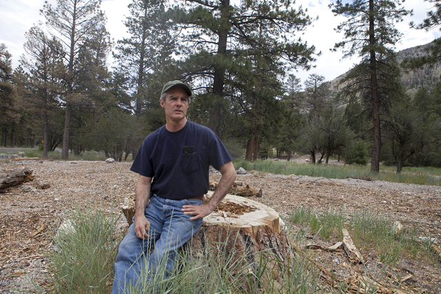 Seated on the stump of a Ponderosa pine cut down last year, Tom Padden, long-time Mount Charleston resident and activist speaks on Tuesday, June 28, 2016, about the use of de-icing salt on the roa ...