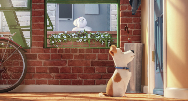 """Gidget (JENNY SLATE) is a naïve-but-gutsy Pomeranian and Max (LOUIS C.K.) is a pampered terrier mix in Illumination Entertainment and Universal Pictures' """"The Secret Life of Pets."""" Credit: Illumi ..."""