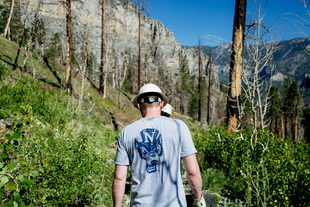Rusty Shepard, a volunteer for three years, walks to his station with other crews members from Great Basin Institute and volunteers from Friends of Nevada Wilderness as they worked on the South Lo ...