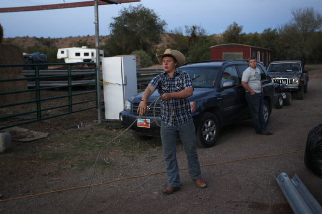 """Arden Bundy  ropes at his father Cliven Bundy's ranch near Bunkerville Nev. Saturday, April 5, 2014. The Bureau of Land Management has begun to round up what they call """"trespass cattle&am ..."""