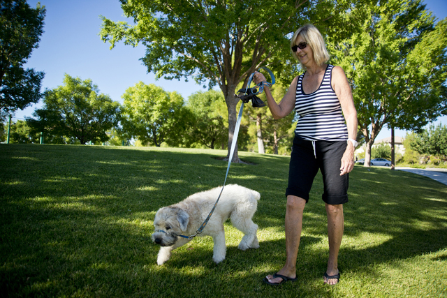 Hillary Torgersen and her son's dog, Duncan, take a walk at South Tower Park in Las Vegas on Friday, July 22, 2016. (Daniel Clark/Las Vegas Review-Journal Follow @DanJClarkPhoto)