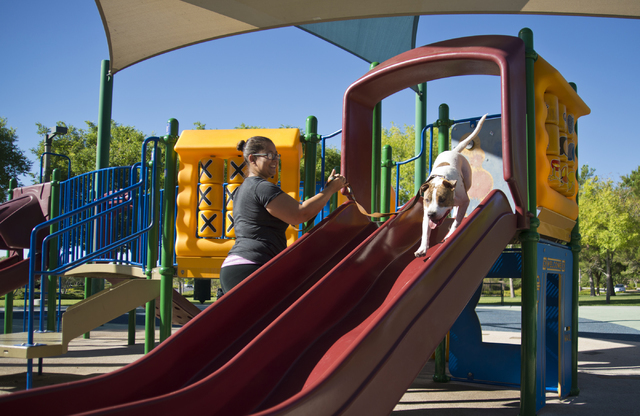 Annette Lee and her dog, Samantha, play on a slide at South Tower Park in Las Vegas on Friday, July 22, 2016. (Daniel Clark/Las Vegas Review-Journal Follow @DanJClarkPhoto)