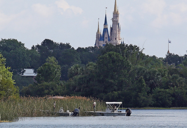In the shadow of the Magic Kingdom, Florida Fish and Wildlife Conservation Officers search for a young boy Wednesday, June 15, 2016 after the boy was grabbed Tuesday night by an alligator at Grand ...