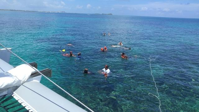 UNLV team members swimming by the reefs. (Mark Anderson/Las Vegas Review-Journal)