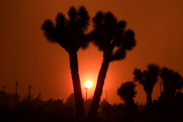The sun sets through smokey skies from the so-called Bluecut Fire in the San Bernardino National Forest in San Bernardino County, California, U.S. August 16, 2016. (Gene Blevins/Reuters)