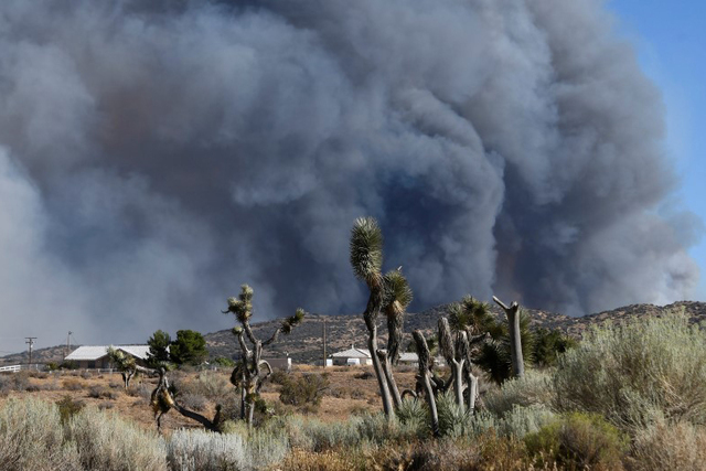 Smoke fills the skies from the so-called Bluecut Fire in the San Bernardino National Forest in San Bernardino County, California, U.S. August 16, 2016. (Gene Blevins/Reuters)