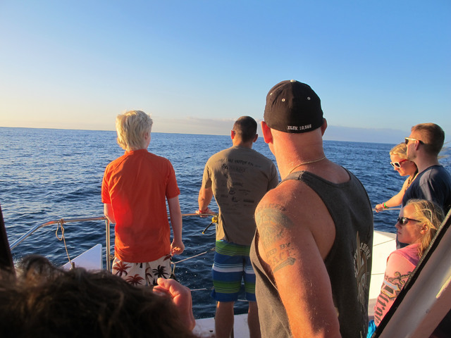 Tourists look out on the horizon as their boat searches for dolphins in waters off Waianae, Hawaii, Jan. 21, 2016. Federal regulators are proposing a widespread ban on swimming with Hawaii's spinn ...