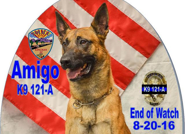Amigo (Kingman Police Department)